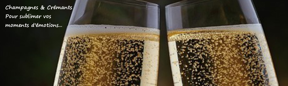 Champagnes & crémants cave de vigne en vin audierne bretagne