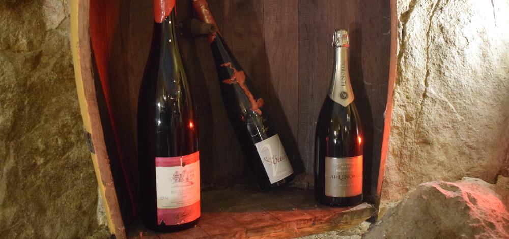 magnums cave de vigne en vin audierne bretagne